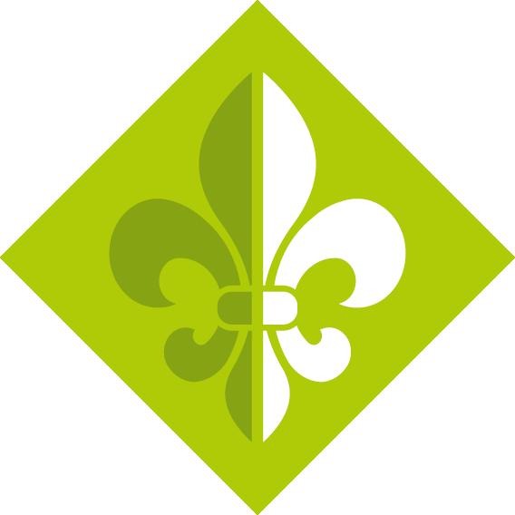 Znak metodyki - harcerze (kolor)